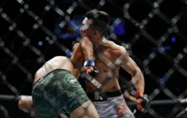 Video / Si ka mundësi! Yair Rodriguez me nokautin e vitit në UFC
