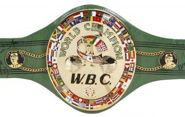 WBC shtyn me një javë marrëveshjen mes dy boksierëve, ja arsyeja