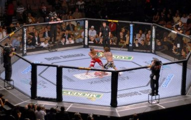 Franca legalizon artet marciale mikse, nga 1 janari UFC zbarkon në Paris