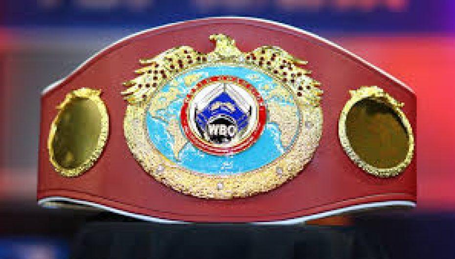 WBO urdhëron Usyk të duelojë